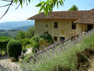Sesto Fiorentino Italy Vacation Rentals - Villa