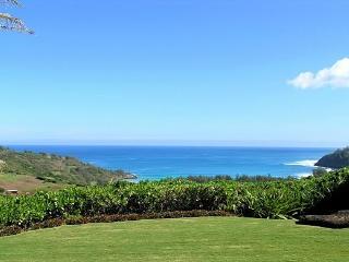 Kilauea Hawaii Vacation Rentals - Villa