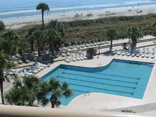 Hilton Head South Carolina Vacation Rentals - Villa