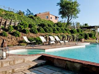 Sammontana Italy Vacation Rentals - Villa