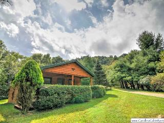 Cozy Cabin in a Private Setting in Valle Crucis, NC