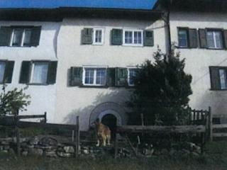 Vacation Apartment in Maienfeld - 1023 sqft, comfortable, quiet, friendly (# 5203) #5203