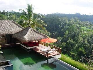 Nungnung Indonesia Vacation Rentals - Villa
