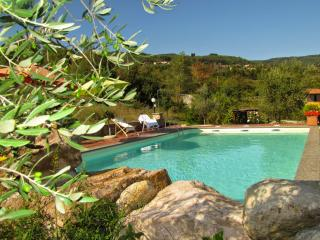 Santa Fiora Italy Vacation Rentals - Home