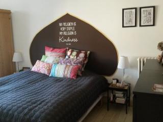 Copenhagen Denmark Vacation Rentals - Apartment