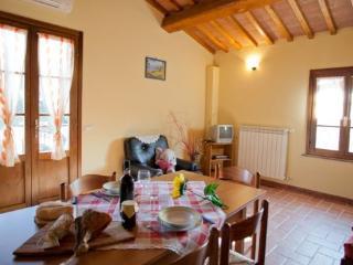 Terricciola Italy Vacation Rentals - Home