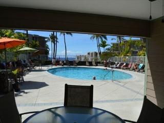 Kailua-Kona Hawaii Vacation Rentals - Apartment