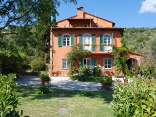 San Martino in Freddana Italy Vacation Rentals - Villa