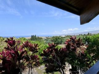 Views of the coastline, Kohala mountain, and magnificent sunsets are enchanting