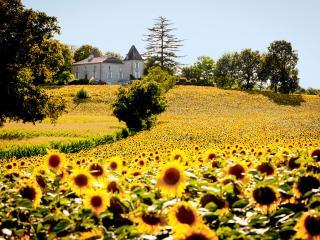 Saint Colomb de Lauzun France Vacation Rentals - Home