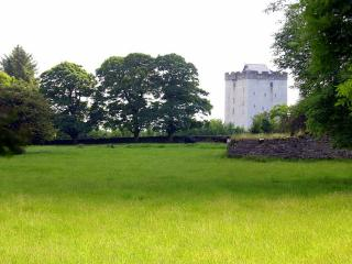 Kilmaine Ireland Vacation Rentals - Home