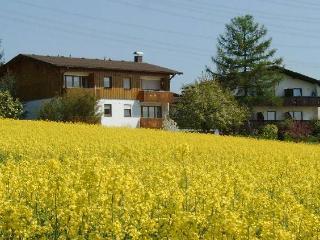 Vacation Apartment in Bad Bellingen - 560 sqft, 1 bedroom, max. 4 People (# 7668) #7668