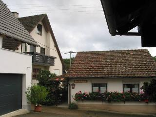Feldberg Germany Vacation Rentals - Apartment