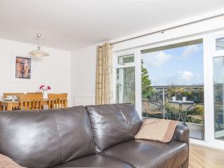 Dawlish England Vacation Rentals - Apartment