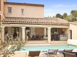 Trans-en-Provence France Vacation Rentals - Villa