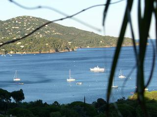 Le Lavandou France Vacation Rentals - Villa