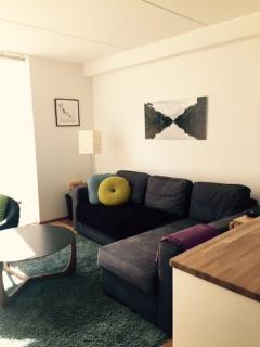 Richard Mortensens Vej Apartment