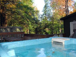 Oakland Maryland Vacation Rentals - Cottage