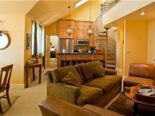 Mountain Village Colorado Vacation Rentals - Studio