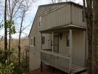 Fleetwood North Carolina Vacation Rentals - Apartment