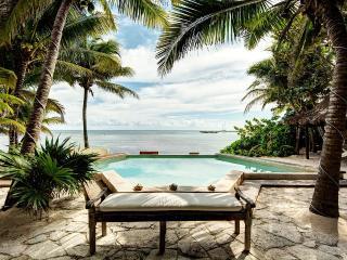 Simiane-la-Rotonde France Vacation Rentals - Villa