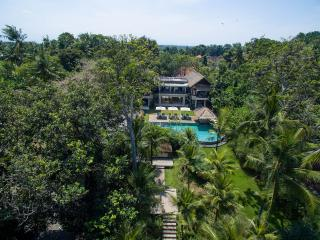 Seseh Beach Villas II - The villa and gardens from above