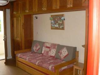Le Grand Bornand France Vacation Rentals - Apartment