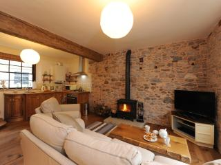 Buckfastleigh England Vacation Rentals - Cottage