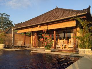 Ubud Indonesia Vacation Rentals - Cottage