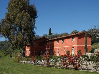 San Martino in Freddana Italy Vacation Rentals - Farmhouse / Barn