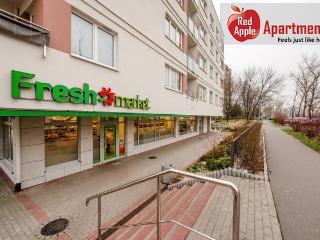 Warsaw Poland Vacation Rentals - Apartment