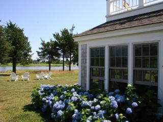 Hydrangeas and Waterviews  and Summer