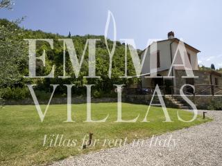 Florence Italy Vacation Rentals - Villa