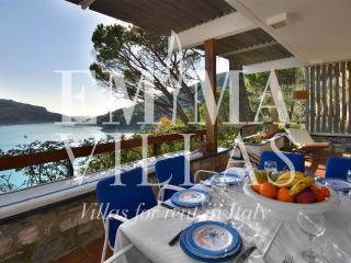Portovenere Italy Vacation Rentals - Villa