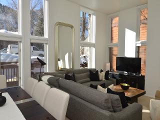 Aspen Colorado Vacation Rentals - Apartment