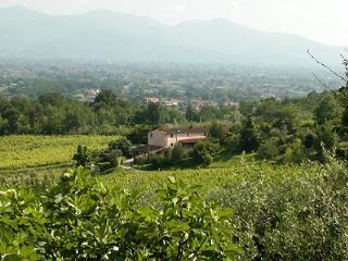 Matraia Italy Vacation Rentals - Villa