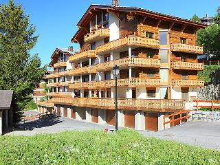 Nendaz Switzerland Vacation Rentals - Apartment