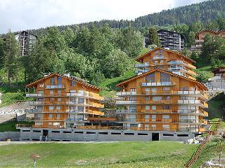 Nendaz Switzerland Vacation Rentals - Apartment