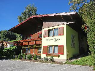 Fugen Austria Vacation Rentals - Villa