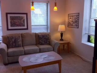 Chicago Illinois Vacation Rentals - Apartment