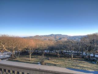 Elderberry Escape at Beech Mountain