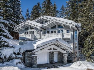 Saint Bon Tarentaise France Vacation Rentals - Chalet