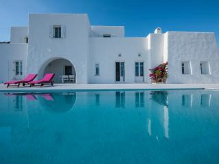 Paros Greece Vacation Rentals - Villa