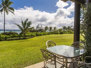 Lihue Hawaii Vacation Rentals - Apartment