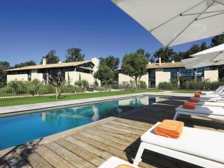 Les Baux de Provence France Vacation Rentals - Villa