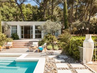 La Roque sur Pernes France Vacation Rentals - Villa