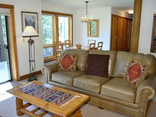 Teton Village Wyoming Vacation Rentals - Apartment