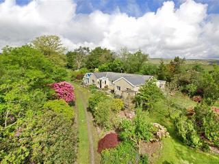 Buckfastleigh England Vacation Rentals - Home