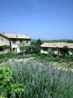 Montecchio Italy Vacation Rentals - Home