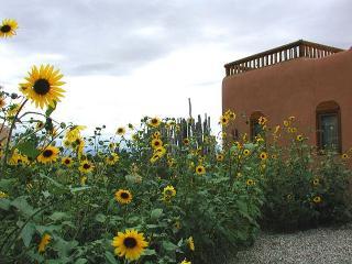 Arroyo Seco New Mexico Vacation Rentals - Studio